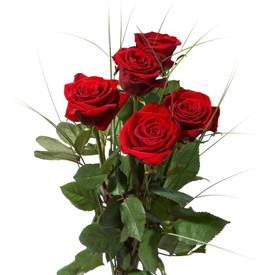 buchet-5-trandafiri-rosii