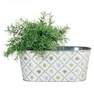 Jardiniera ovala din metal-model plante