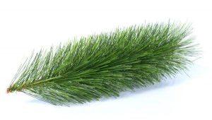 brad-artificial-verde-inchis